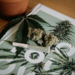 Cannabis Questions: What Exactly Are Cannabinoids?Cannabis Questions: What Exactly Are Cannabinoids?